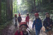 010-2018-06-09-Wilde_Kletteraffen-Schweizer_Jura